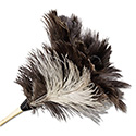 "Professional Ostrich Feather Duster, 7"" Handle"