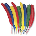 Quill Feathers, Assorted Colors, 24 Feathers/Pack